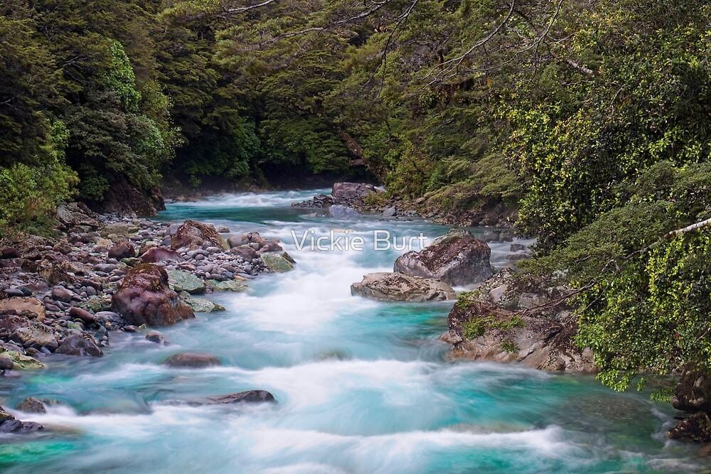 Glacial water flowing by Vickie Burt