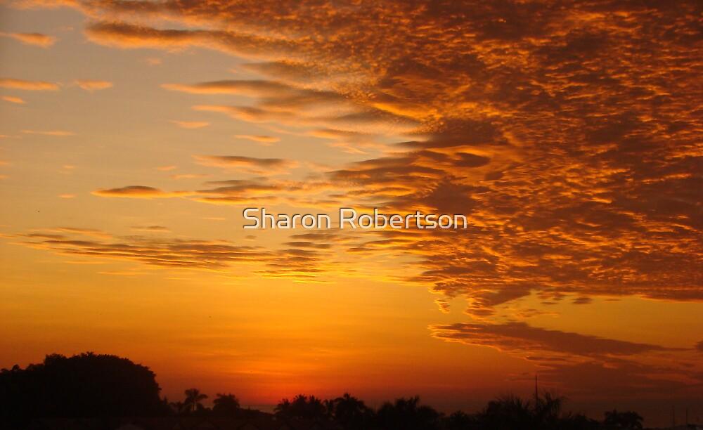 Darwin Sunset - Over Mindil Markets by Sharon Robertson