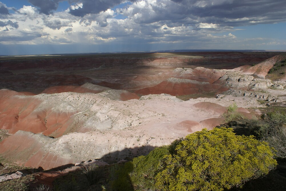 Painted Desert by melmel73098