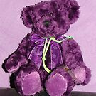 PURPLE TEDDYBEAR by Sharon Robertson