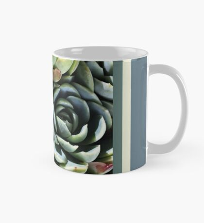 World Of The Succulent Mug