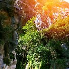 Goynuk Canyon, national nature park in Turkey by dariazu