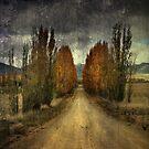 Autumn Textures by Annette Blattman