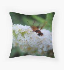 Hummingbird Moth... Throw Pillow