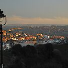 Whitby Town from west cliff by dougie1