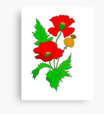 Vector Poppy  Canvas Print