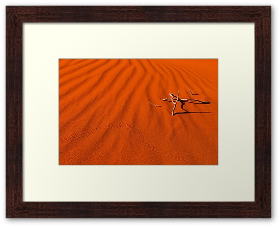 Red Dune by Dieter Tracey