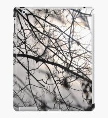 A tree branch after the storm iPad Case/Skin
