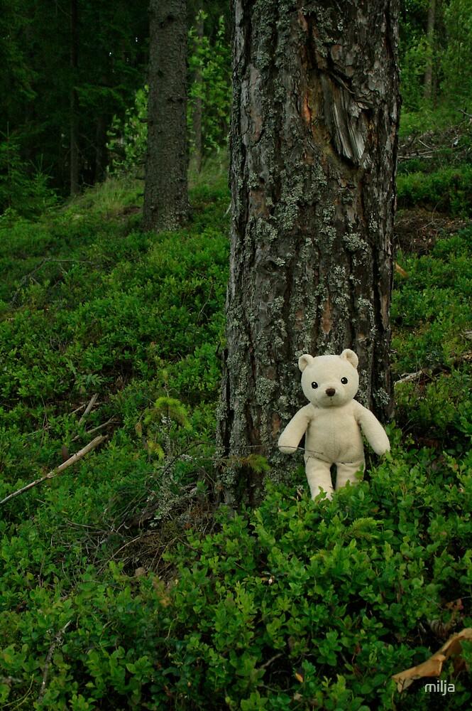 Teddy Bear, Teddy Bear turn around.... by milja