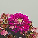 Autumn Dahlia and Hydrangea Flowers by OLIVIA JOY STCLAIRE