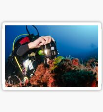 Scuba diver underwater photography in the Mediterranean seabed  Sticker