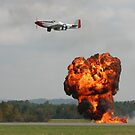 Fireball! by Patricia Montgomery