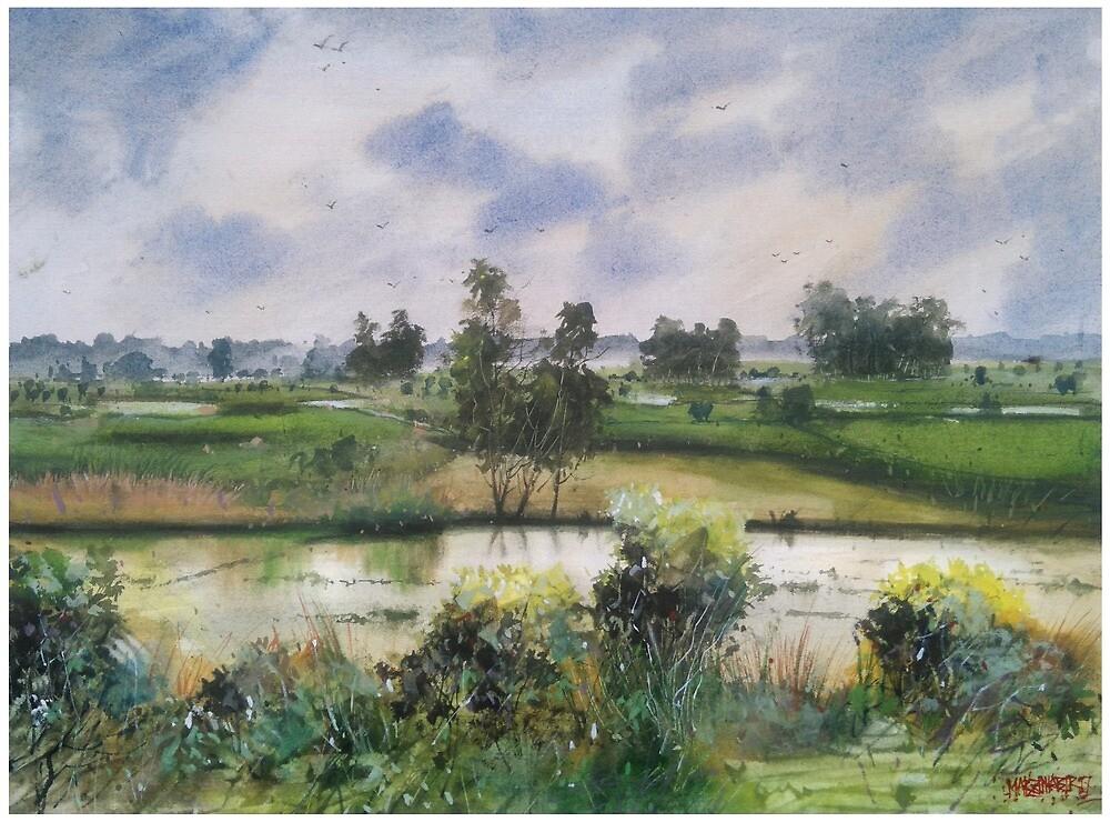Landscape by Marzan Kabir