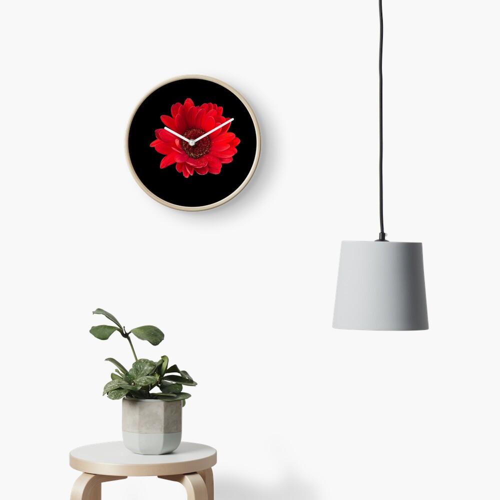 Close up photograph of a red gerbera flower Clock