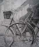 CuBicycling Basket by paintingeezer