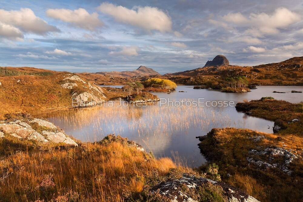 Canisp and Suilven.  Autumn Light. Assynt. Scotland. by Barbara  Jones ~ PhotosEcosse