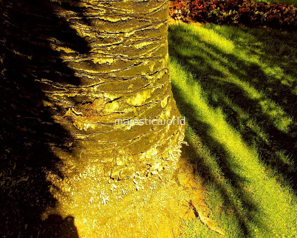 Forest Green Shadow Light Majestic-world.com by majesticworld