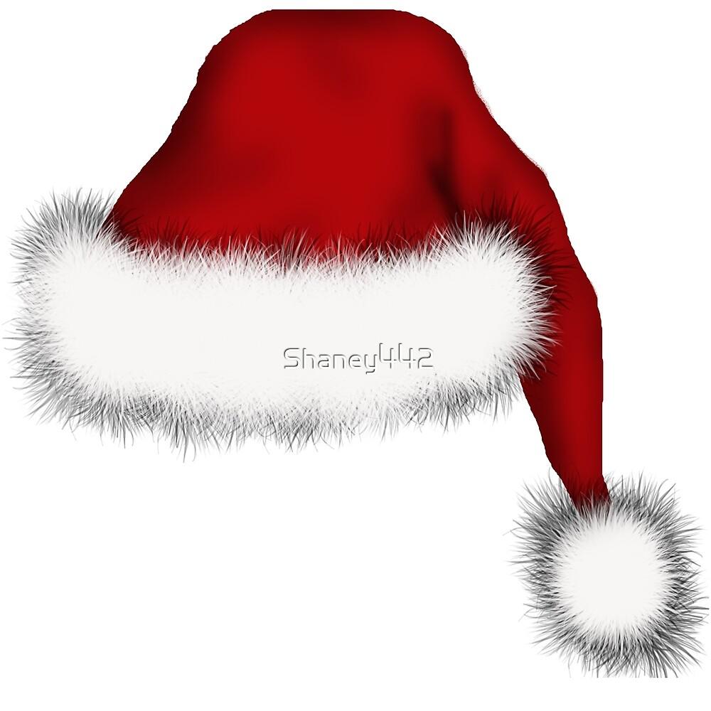 Santa Hat by Shaney Alice Gober