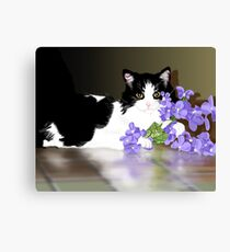 Cherokee Kitty Canvas Print