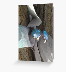 Wadsworth dragonfly in winter Greeting Card