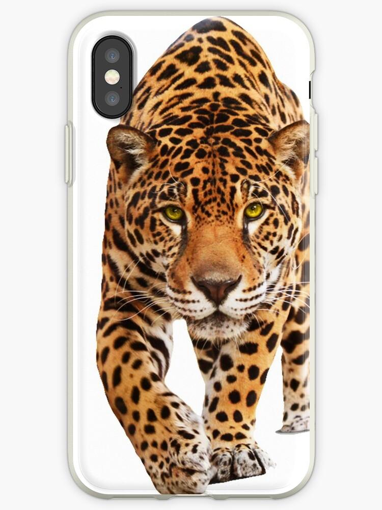 Jaguar by edleon