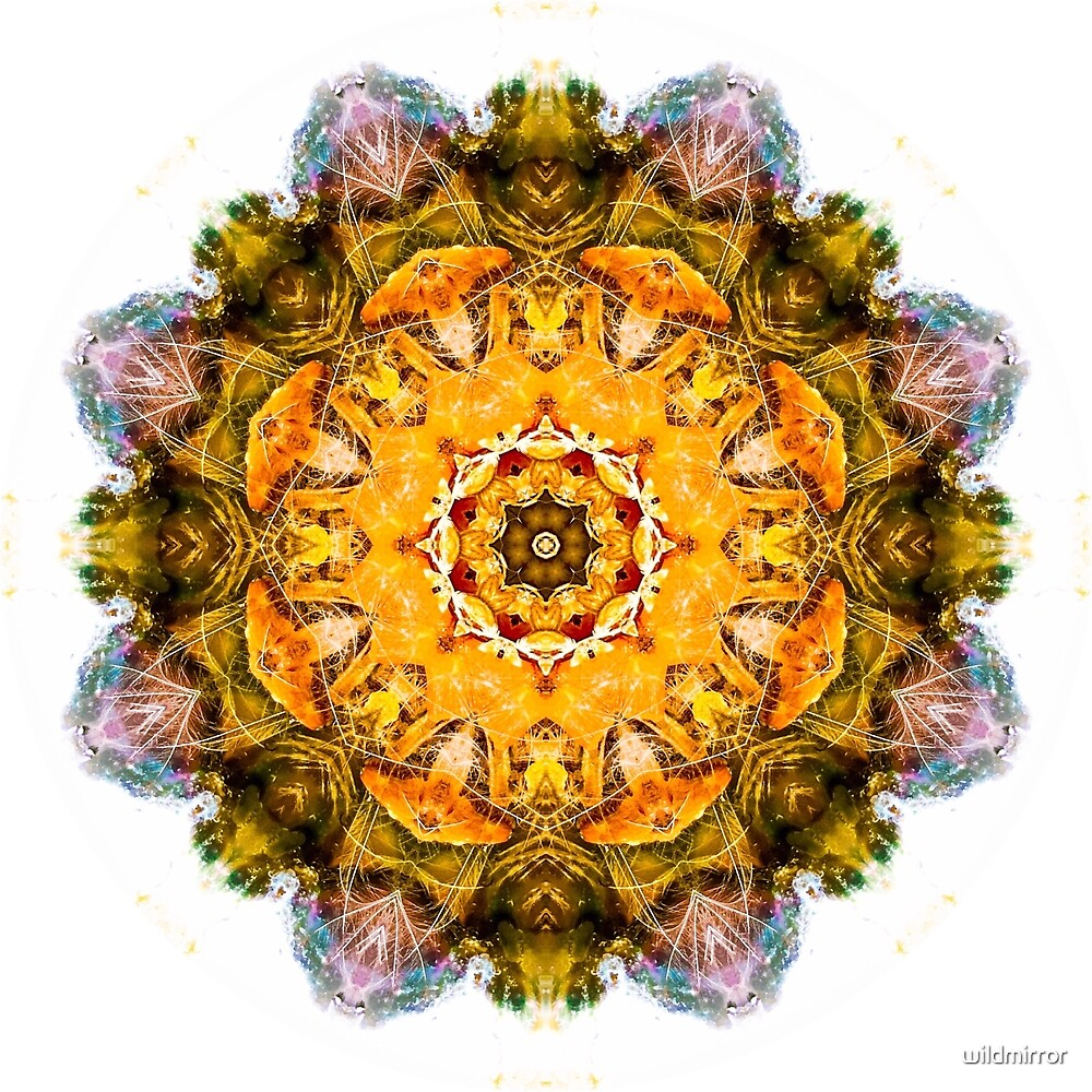Shine From Within Mandala by wildmirror