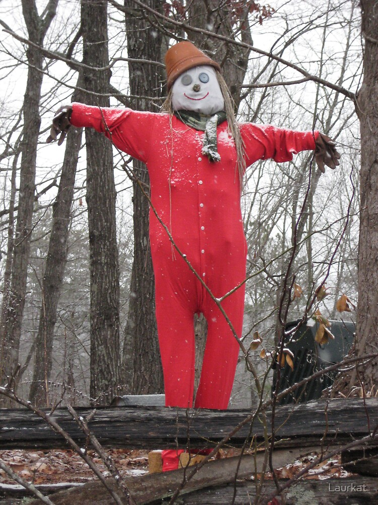 union suit scarecrow in January by Laurkat