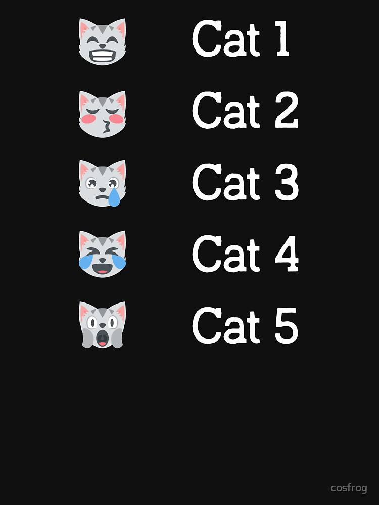 Hurricane Category Cat Scale Funny Cat lovers  by cosfrog
