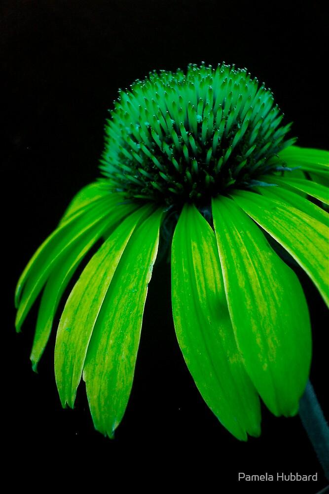 Green Power by Pamela Hubbard