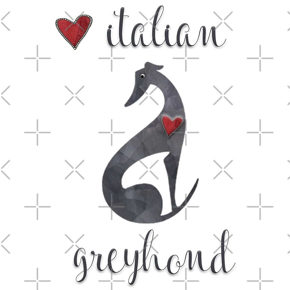 Love Italian Greyhound by lizamperini