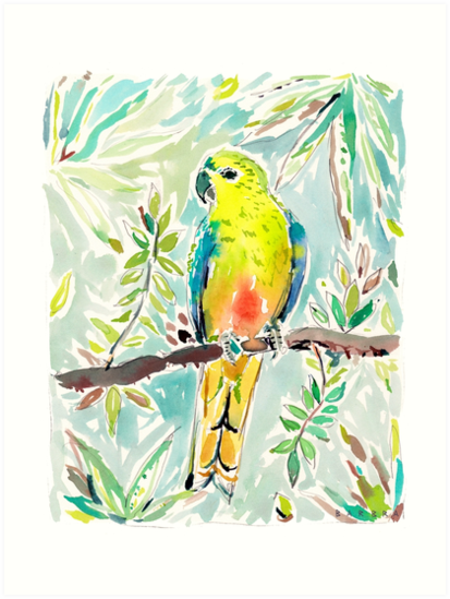 CUTIE the Orange-bellied Parrot by Barbarian