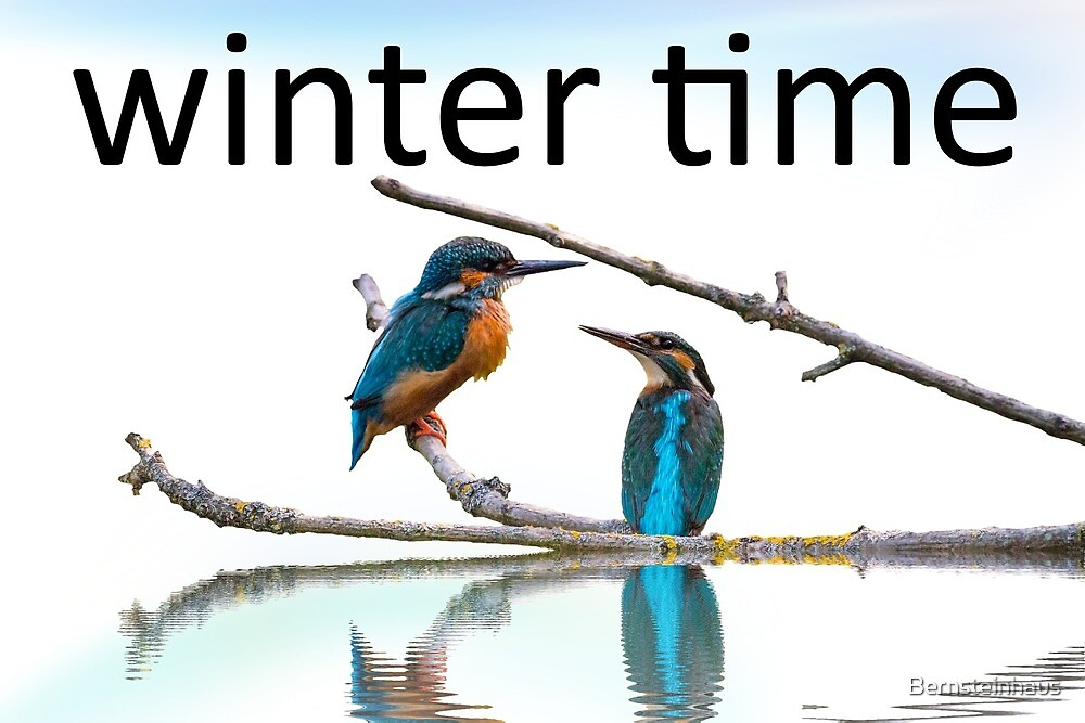 winter time by Bernsteinhaus
