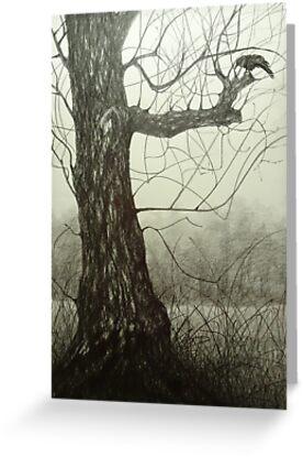 Ash tree by Carol Miller