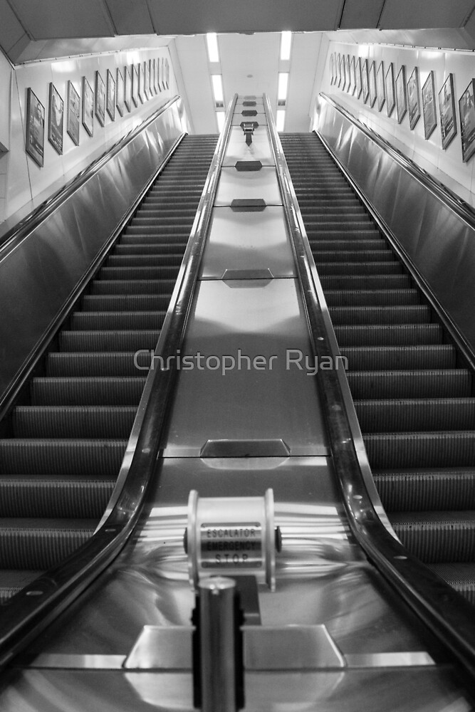 Subway Stairs  by Christopher Ryan