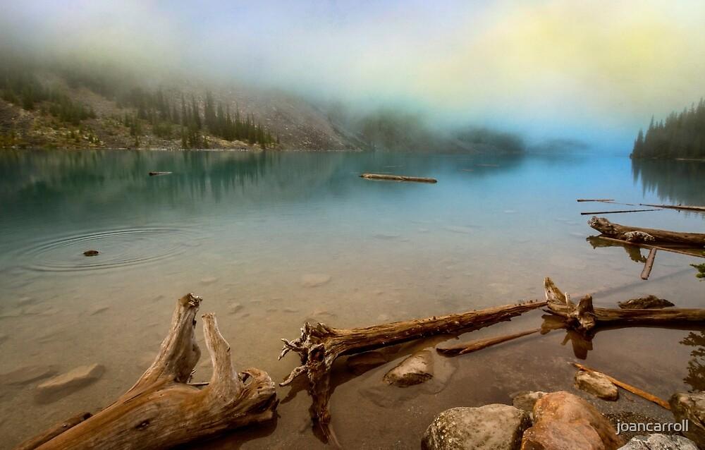 Logs And Boulders Moraine Lake Banff II by joancarroll