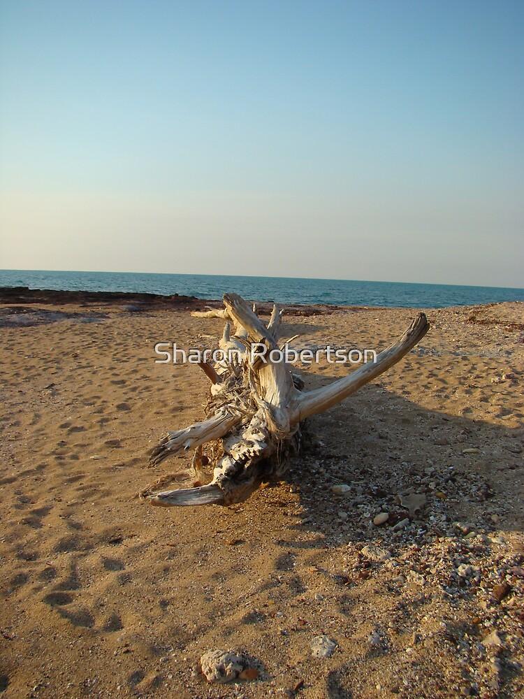 Log on Darwin Beach by Sharon Robertson