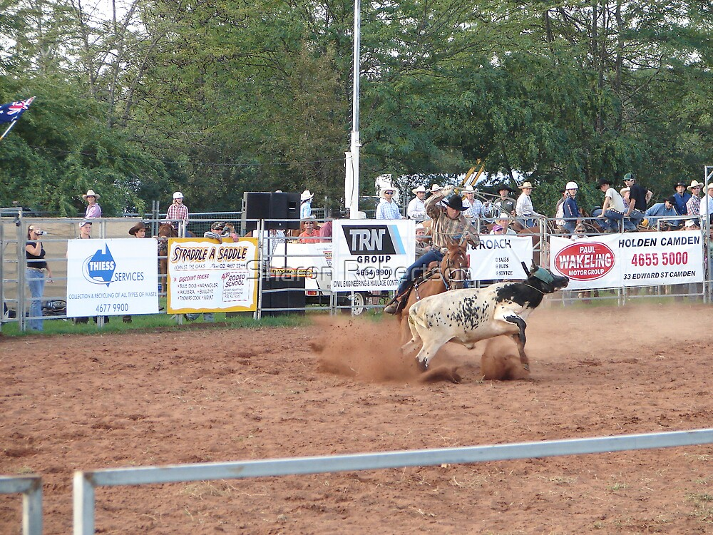 Rodeo Round Up by Sharon Robertson