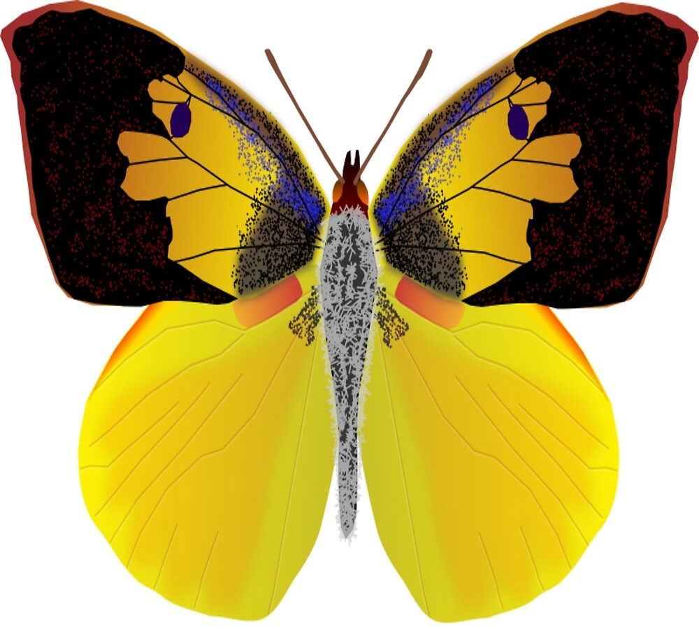 Butterfly t shirt for men and women by malda16