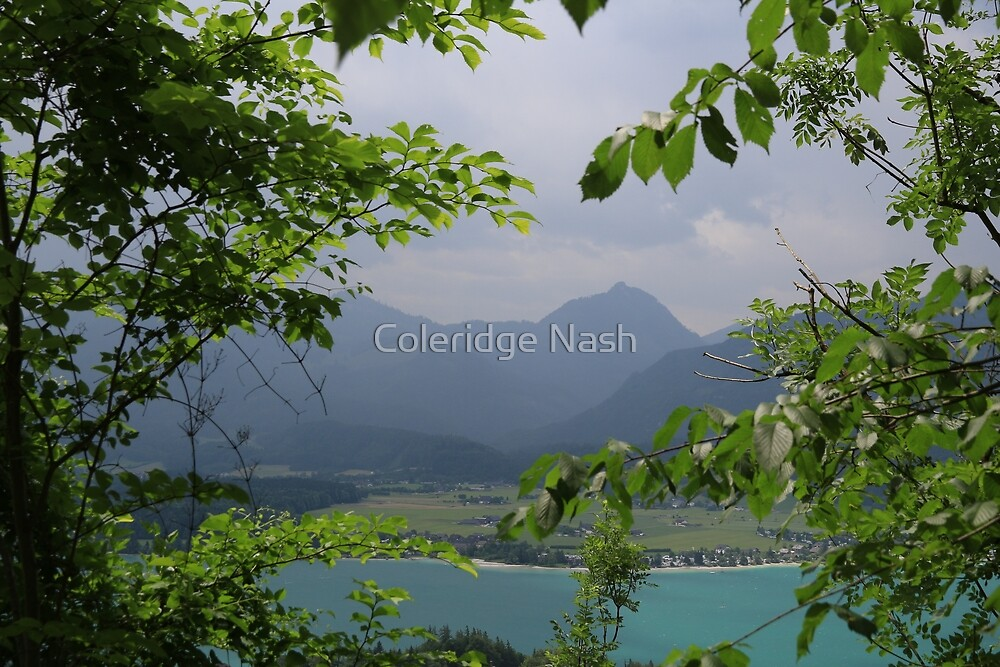 View from a Mountain by Coleridge Nash