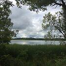 Cloudy Lake Scene by silverdragon
