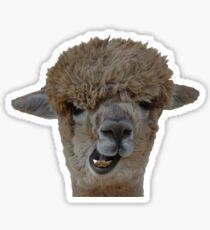 Goofy Alpaca Sticker