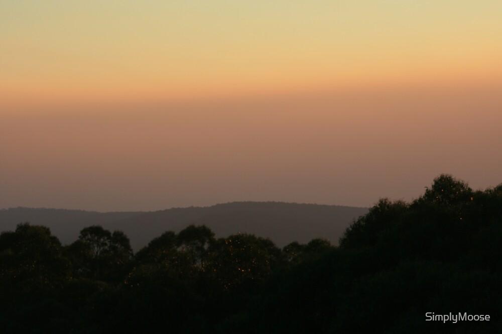 dusk 3 by SimplyMoose