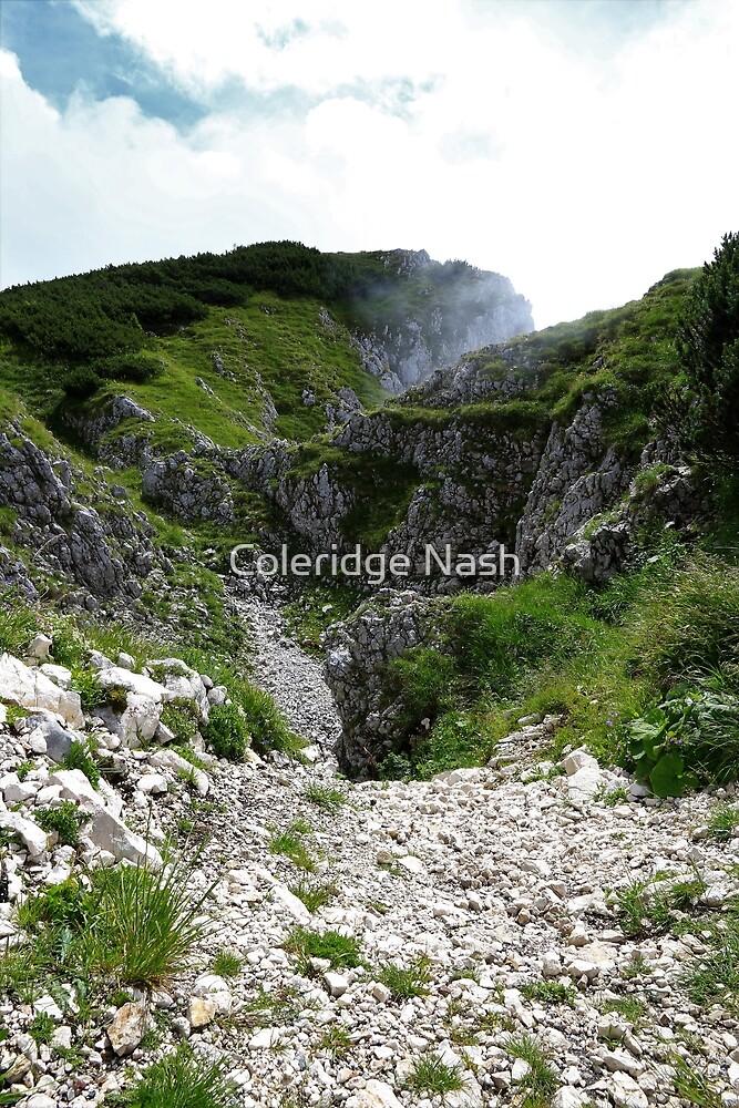 Mountain Ravine by Coleridge Nash