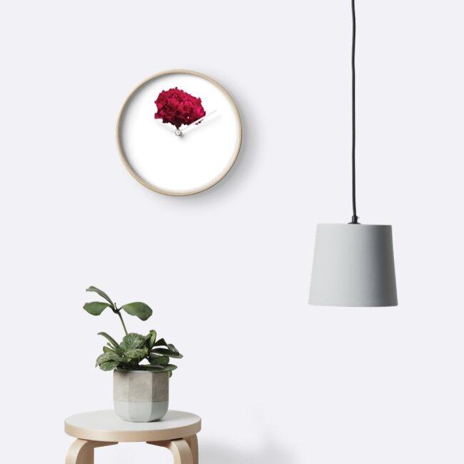 Pink Flower by DachLaeuferin