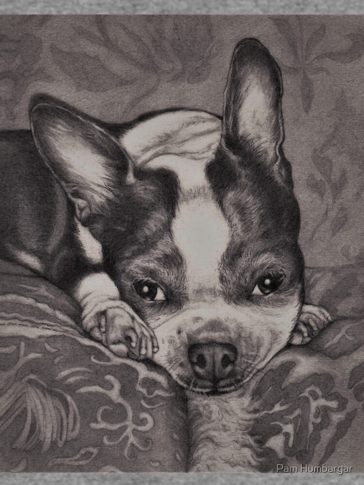Dear Old Boston on Her Pillows by phumbargar