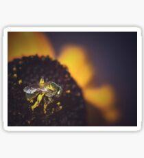 Pollen Sticker