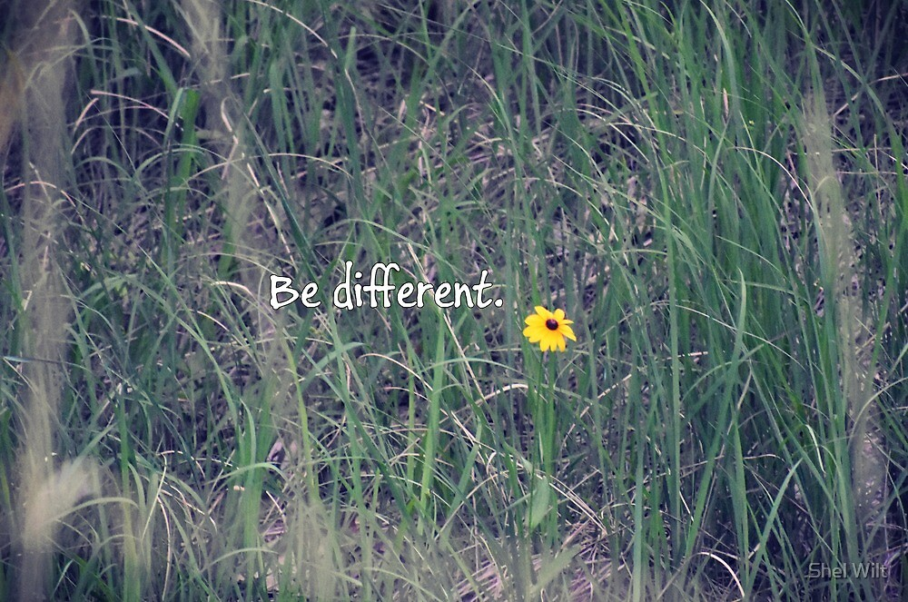 """""""Be Different"""" Flower by Shelly Wilt"""