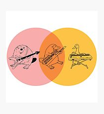Keytar Platypus Venn Diagram - Purple Orange Yellow Photographic Print
