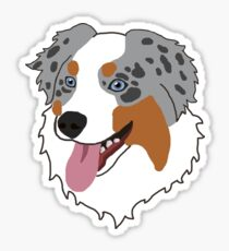 Blue Merle Australian Shepherd Sticker
