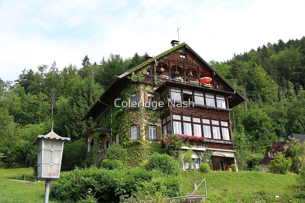 Beautiful House by Coleridge Nash